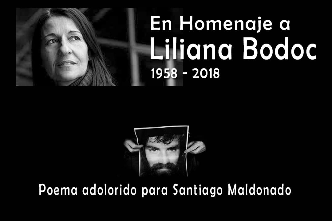 Poema Adolorido por Santiago – Homenaje a Liliana Bodoc